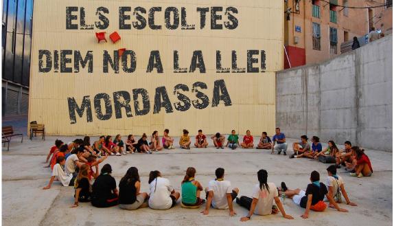 cap_llei_mordassa_vgris
